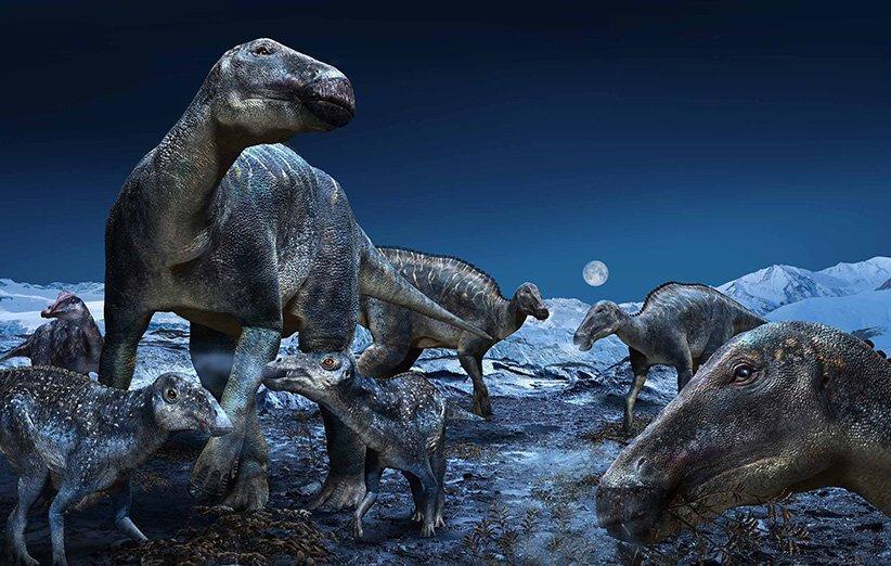 ساختار یکتای استخوان دایناسورها وزن سنگین آن ها را تحمل می نموده است